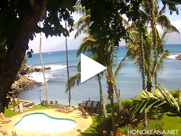 Honokeana Cove Maui Webcam