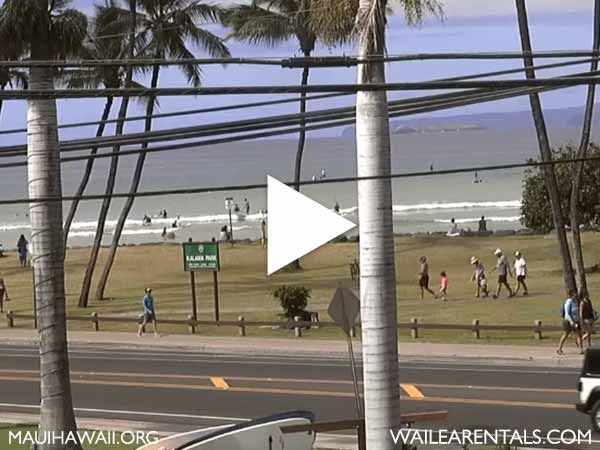 Cove Park webcam