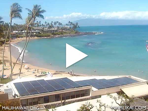 Napili Kai Resort Webcam