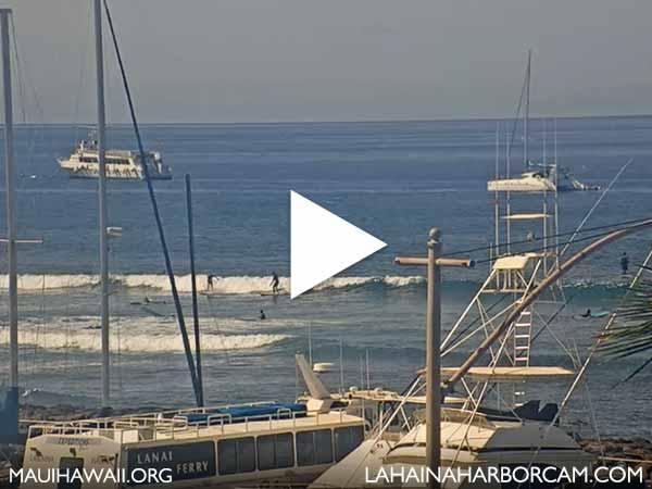 Lahaina Harbor webcam