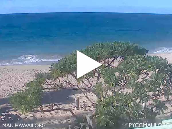 PYCC webcam